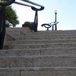 Fósseis e geologia urbana em Aveiro