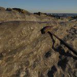 Geologia do Jurássico no Cabo Mondego