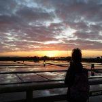 A ciência por trás das paisagens de Sal de Aveiro