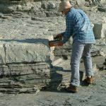 Outcrop Field Geology
